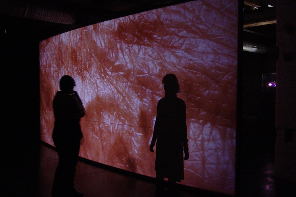 10.10.2009-07.11.2009 Thierry Kuntzel, The Skin